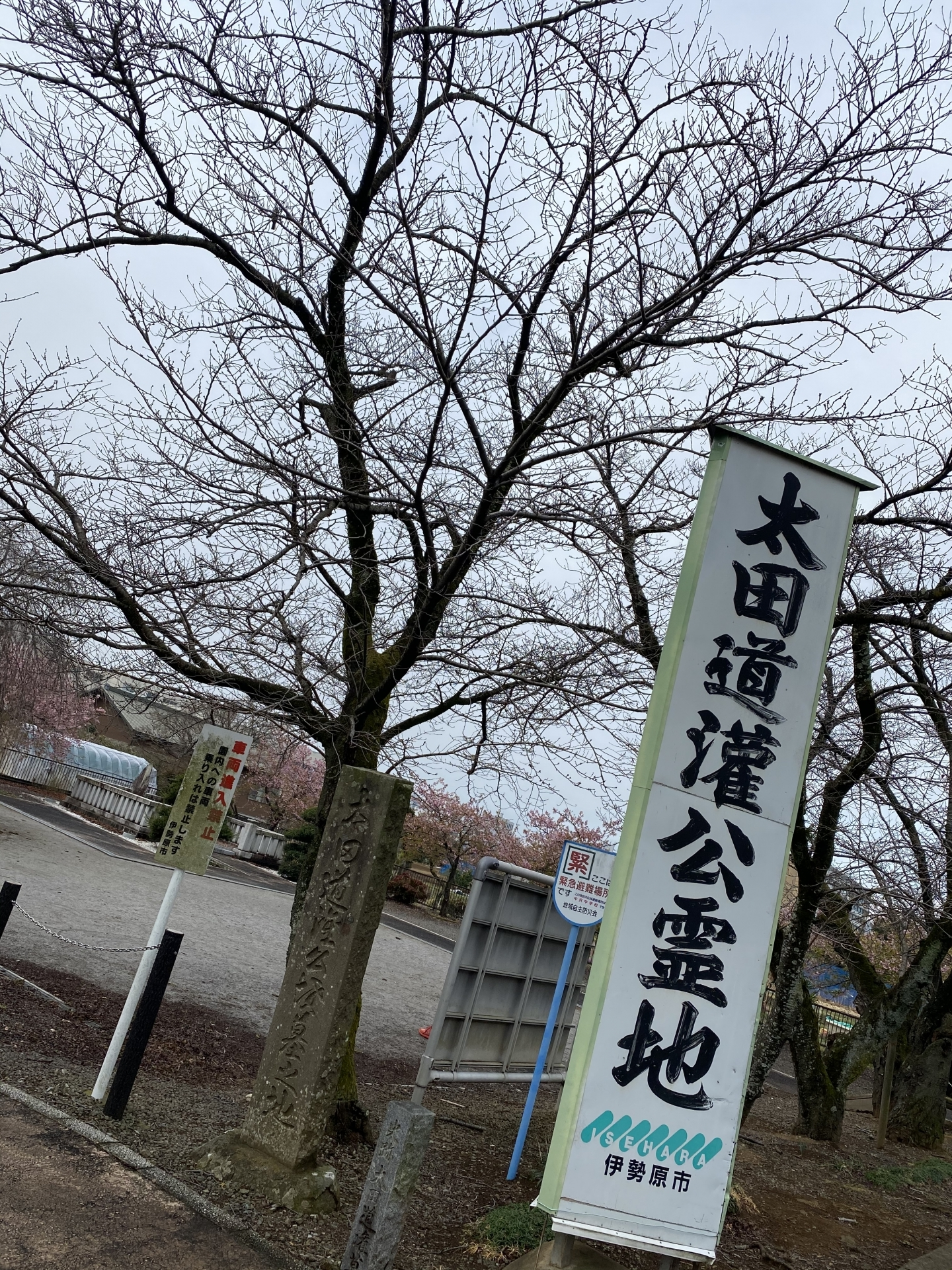 【328】 太田道灌公 (地元 伊勢原の有名人)